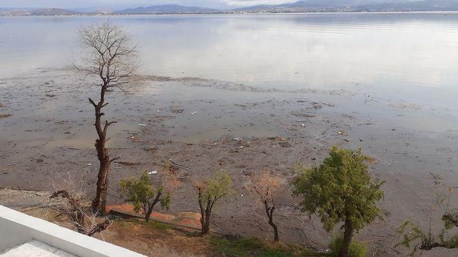 Εικόνα από την παραλία Αυλίδας μετά τις πλημμύρες στην Εύβοια