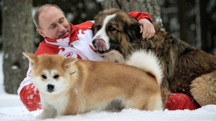 Πούτιν και τα σκυλιά του