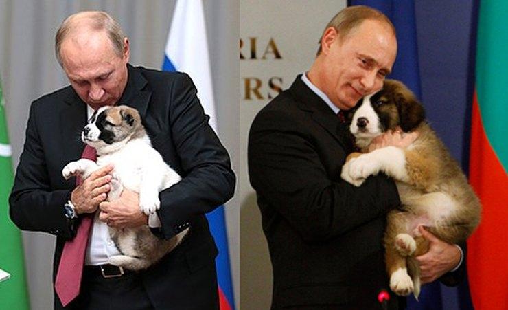 Πούτιν και άλλα δύο από τα σκυλιά του