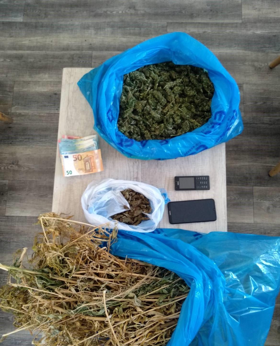 19-7-2021 Συνελήφθησαν δύο καλλιεργητές ναρκωτικών σε περιοχή της Πάτρας (1)